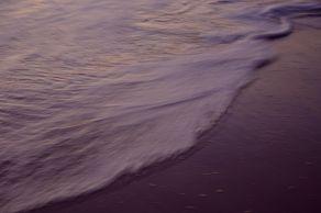 Violet Velvet - handheld shot - Narrabeen Beach - Sydney.jpg